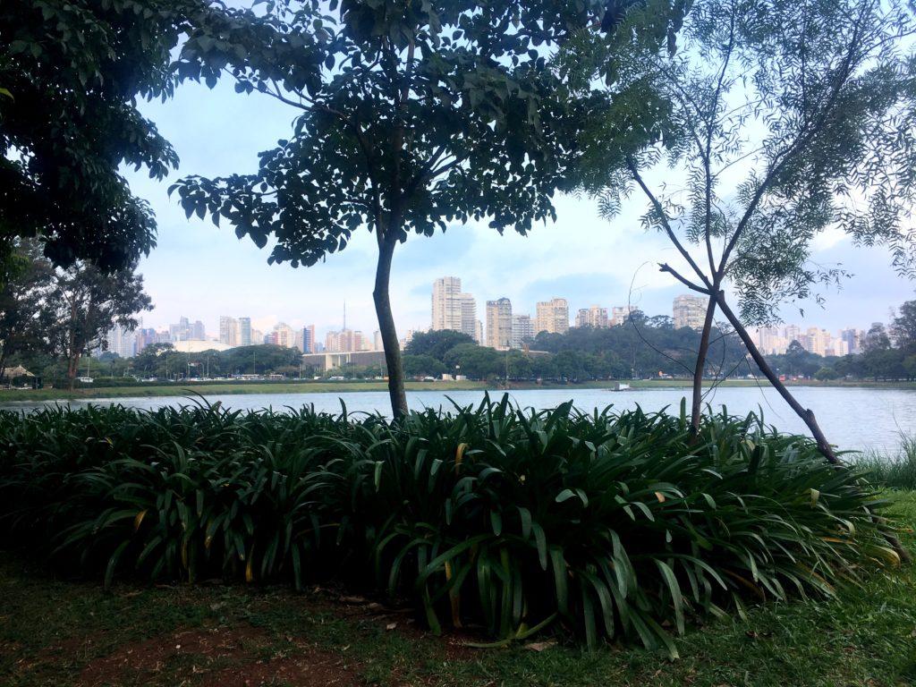 parc d'ibirapuera sao paulo